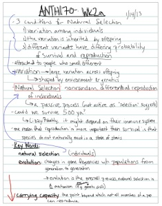 notes taken in Note Taker HD